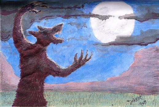 Luna Llena - Full Moon