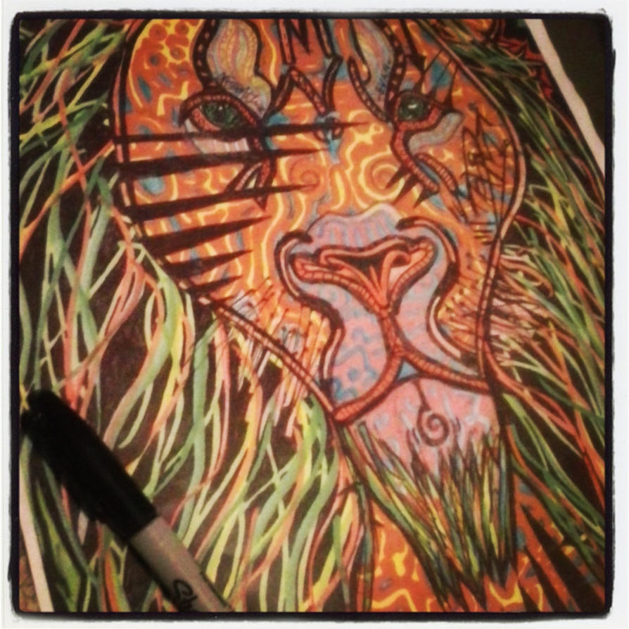 Lion by timmywheeler