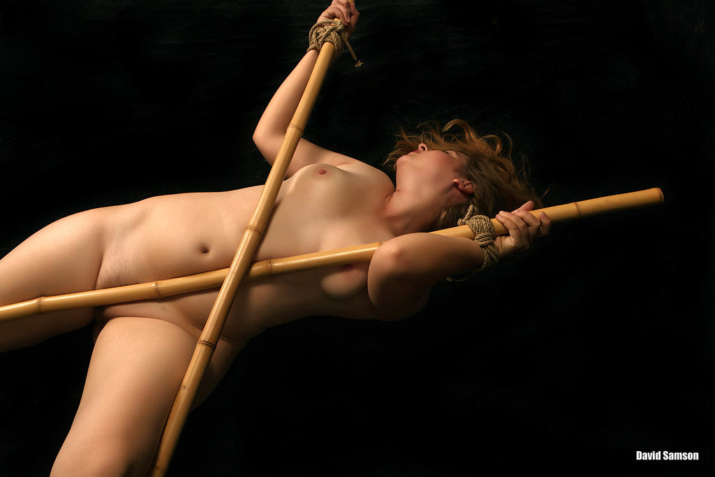http://fc00.deviantart.net/fs71/i/2010/213/8/b/Bamboo_dance_by_DavidSamson.jpg