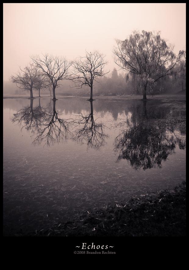 Echoes by BrandonRechten