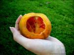 57. Orange by neurolepsia