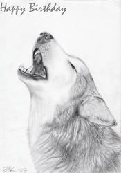 Birthday -howl