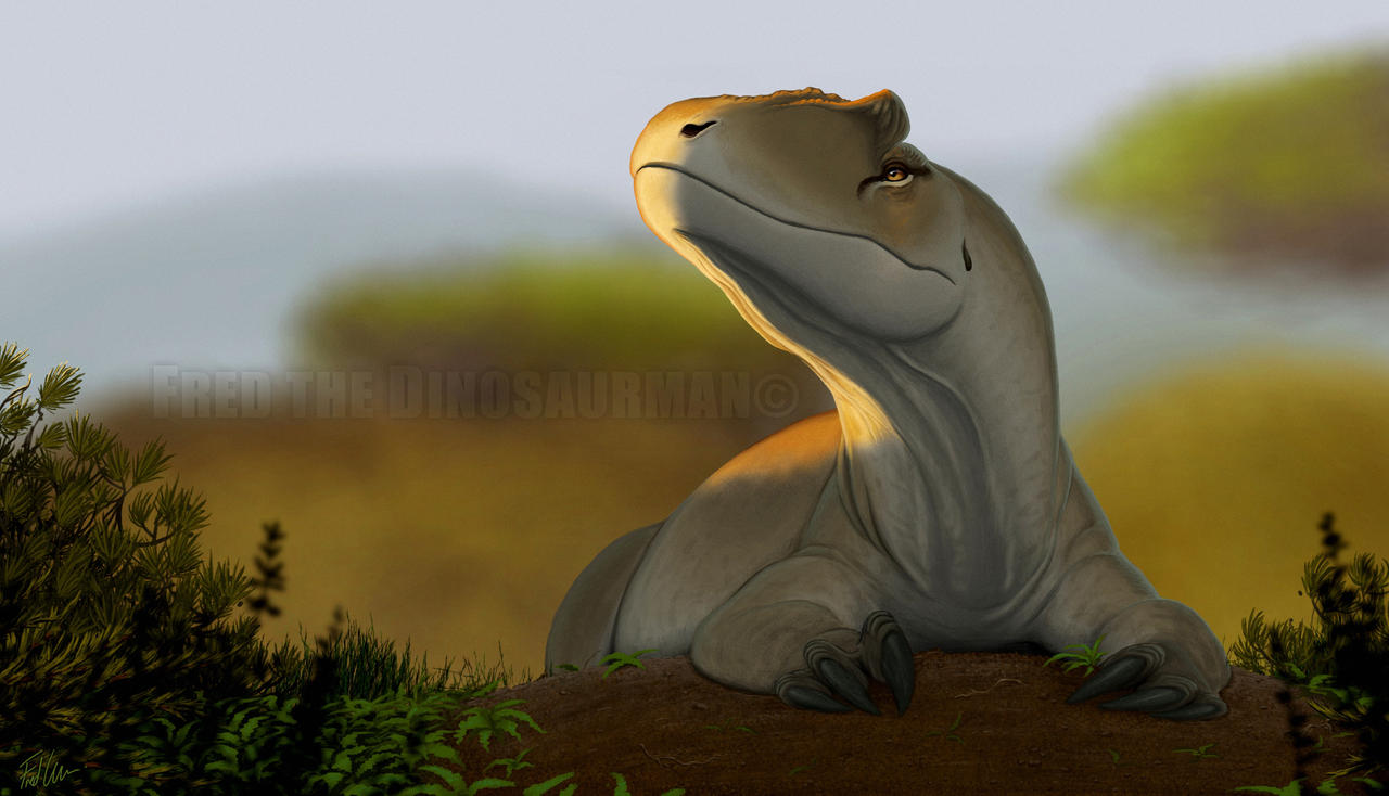 allosaurus_by_fredthedinosaurman-d900hcf.jpg