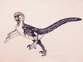 Velociraptor by FredtheDinosaurman
