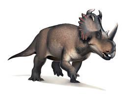 Centrosaurus for Wikipedia by FredtheDinosaurman
