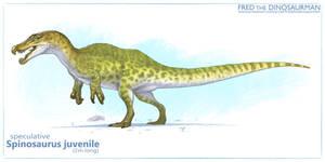 Spinosaurus Juvie