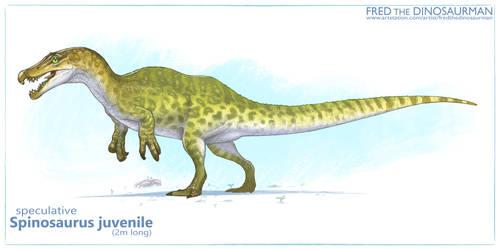Spinosaurus Juvie by FredtheDinosaurman