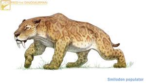 Smilodon populator by FredtheDinosaurman