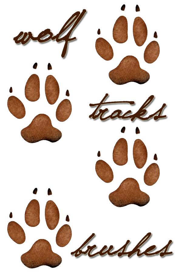 Wolf Paw Print by Missionpb
