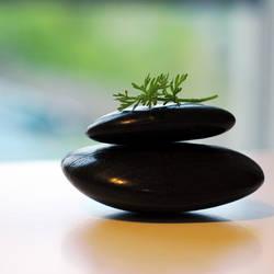 Zen by 0paline