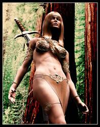 Female Barbarian by Vehemel
