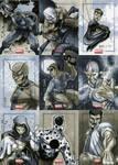 Marvel Universe Sktch Cards 03