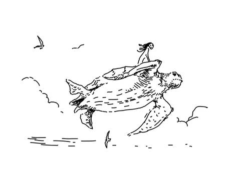 Turtle air