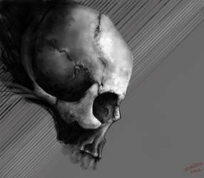 dA muro skull study