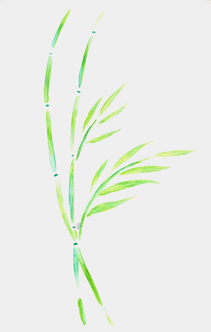Bamboo by lifeislikeajoke