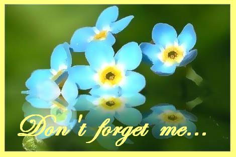 Don't forget me..