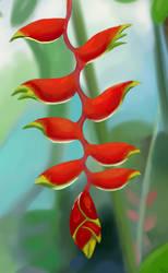 Lobster Claw Flower