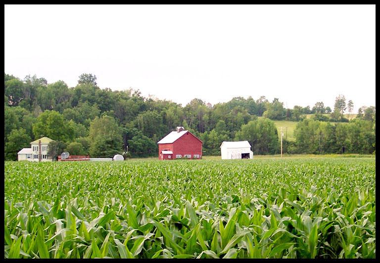 Farm land by InnerDemons