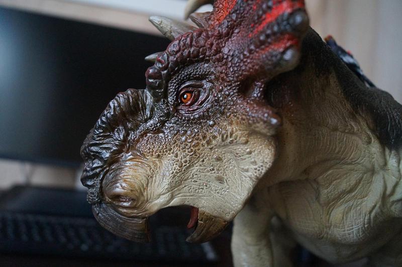 Pachyrhinosaurus by Sergey82M