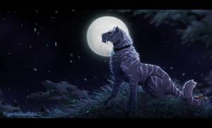 Moonlight (SpeedPaint)