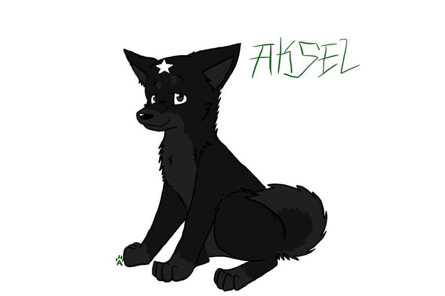 aksel by Driifting-Dream