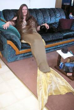 Mermaid Tail costume