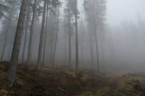 The Last Winter Days by SpiRyu