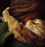 Christmas hug by MirelaStefanova