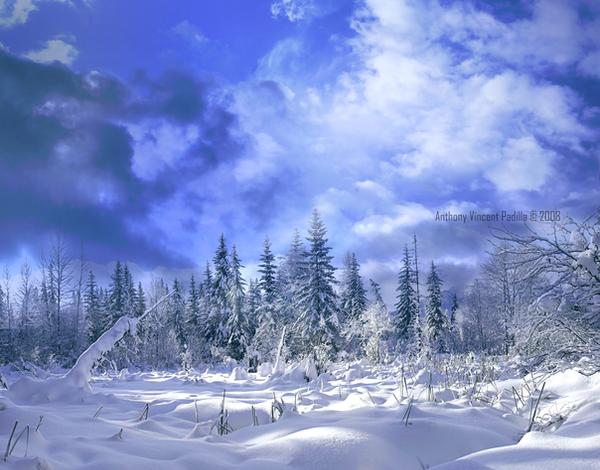 winter_time by Serpentine-Gfx