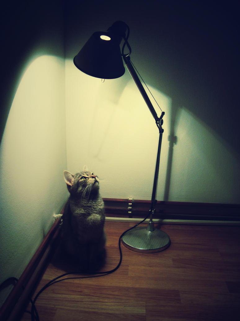 Under the light by kaya01