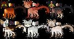 Cat Designs || OTA