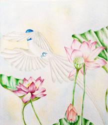 Plan-of-finding-lotus