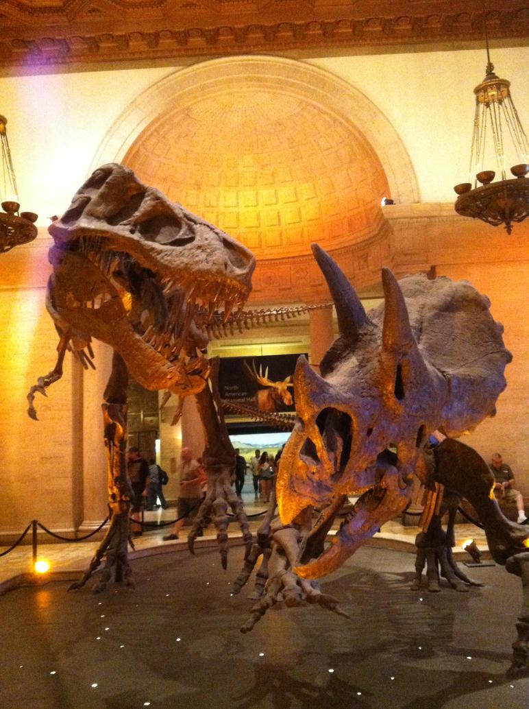 Los Angeles Natural History Museum Membership