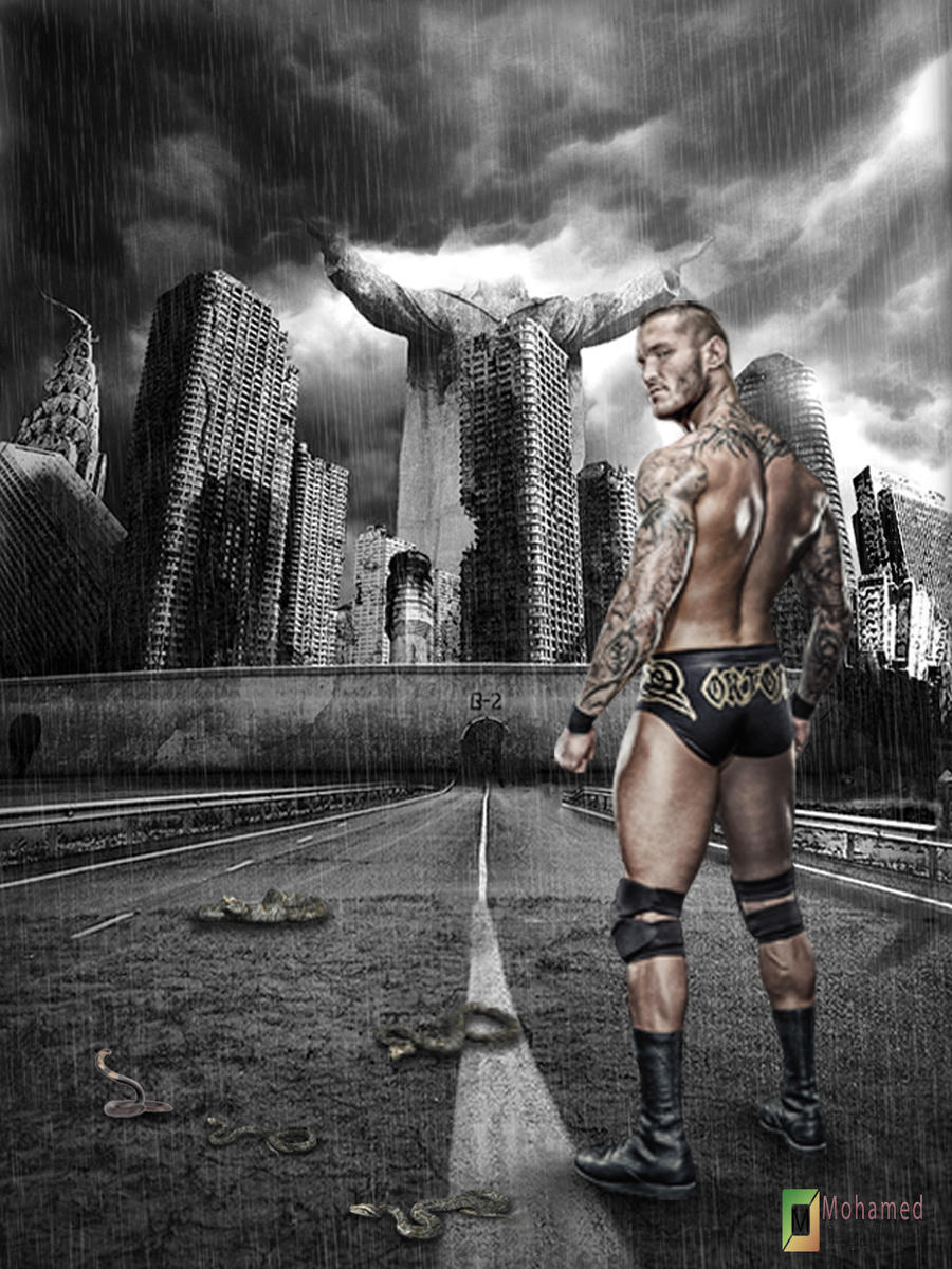 New Design ... Randy OrTon by MohamedEssawyDesign