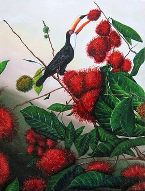 Toucan and Rambutans