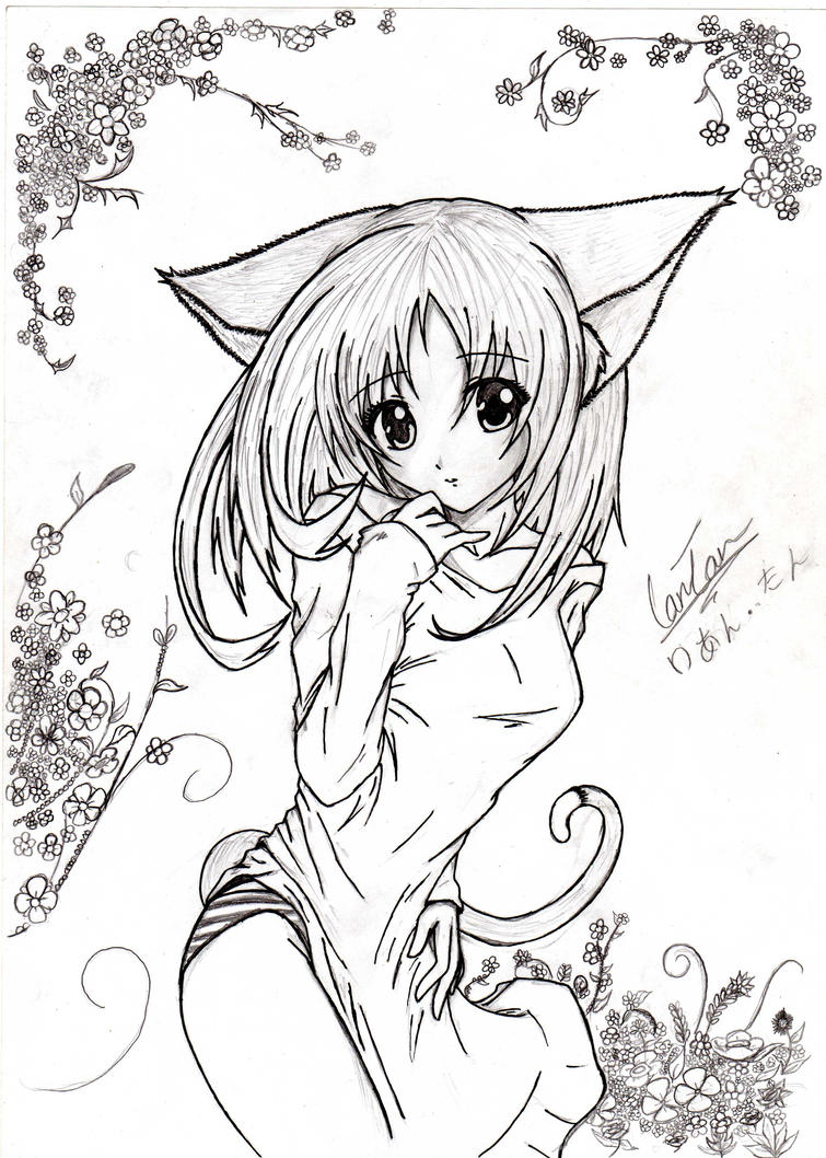 How To Draw Anime Girl Neko