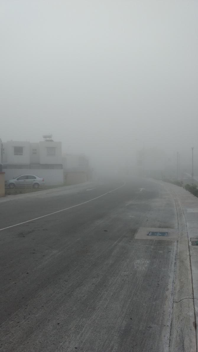 En la Niebla by zoraimar