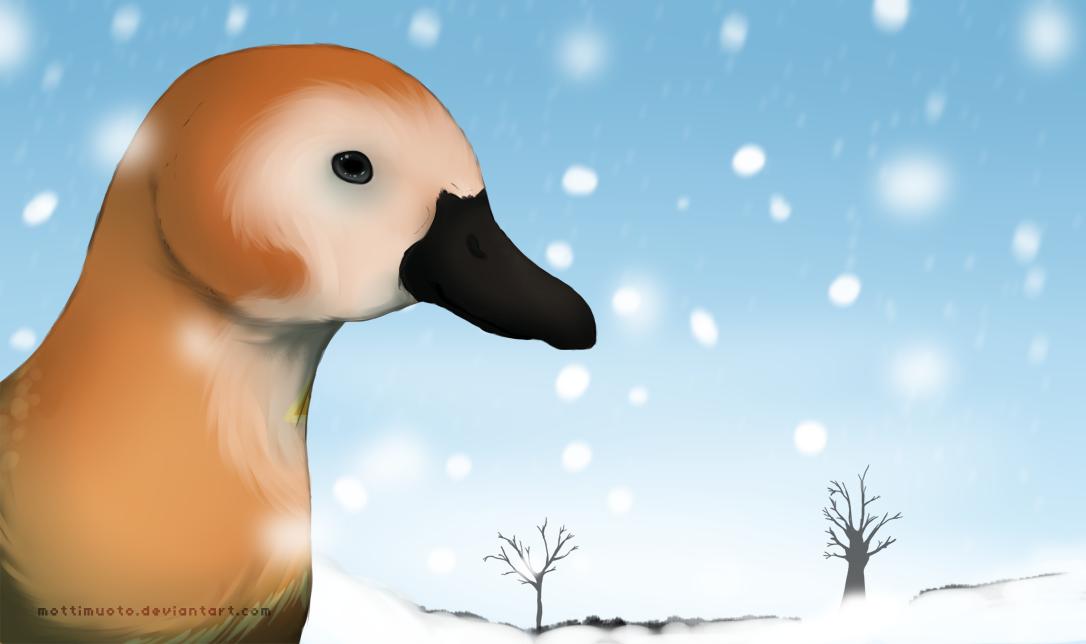 Der erste Schnee by Mottimuoto