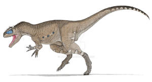Allosaurus No. 2