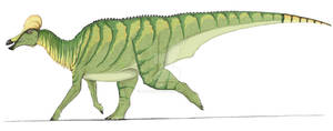 Corythosaurus in color