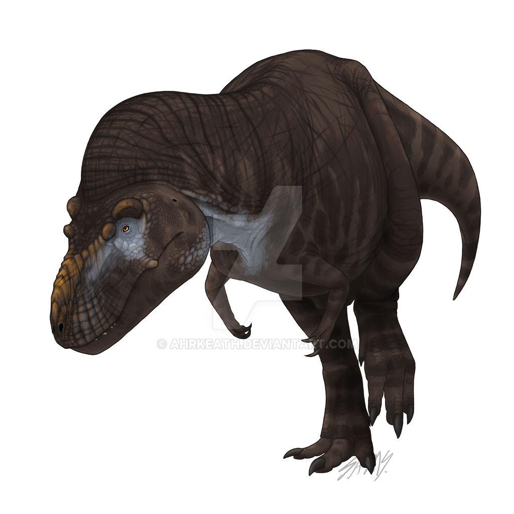 Rex 2018