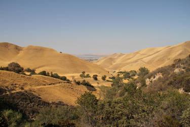 Vast Golden Hills by NickBentonArt