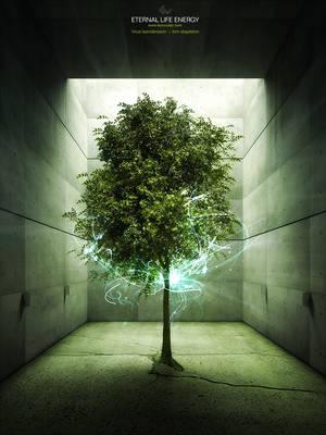 Eternal Life Energy by ev-one