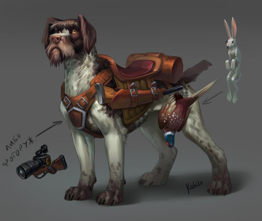 Witcher Dog Cat