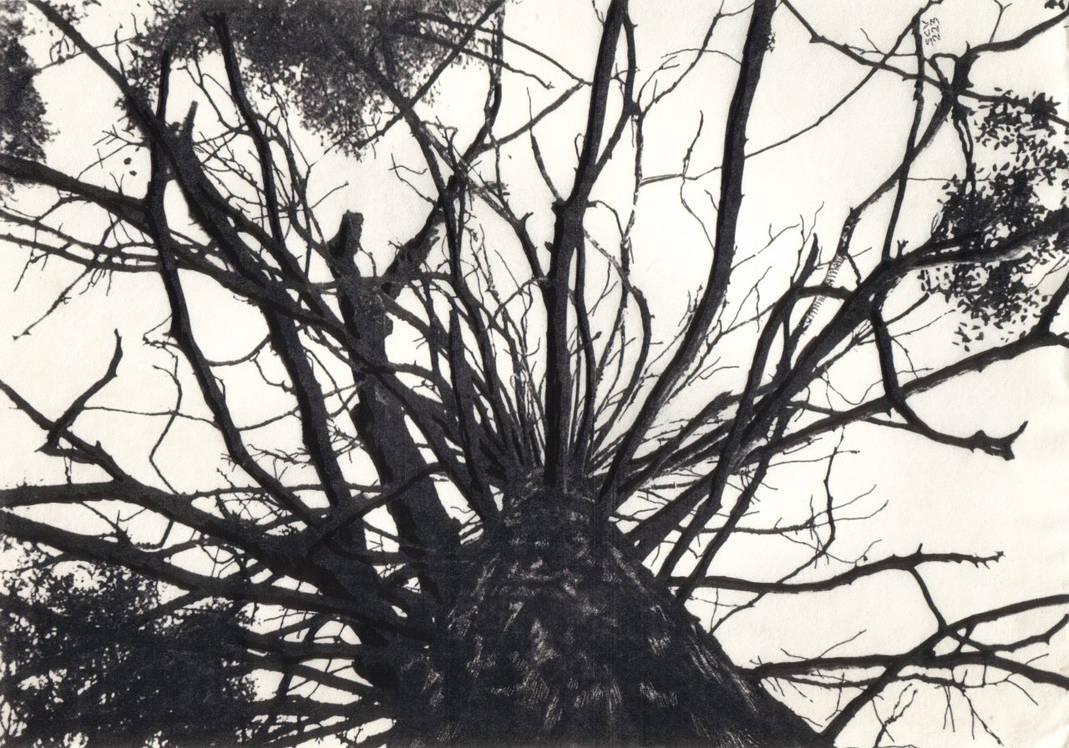 Radwood by scottVee