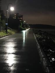 Pathway in the Rain