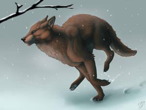 Running for winter
