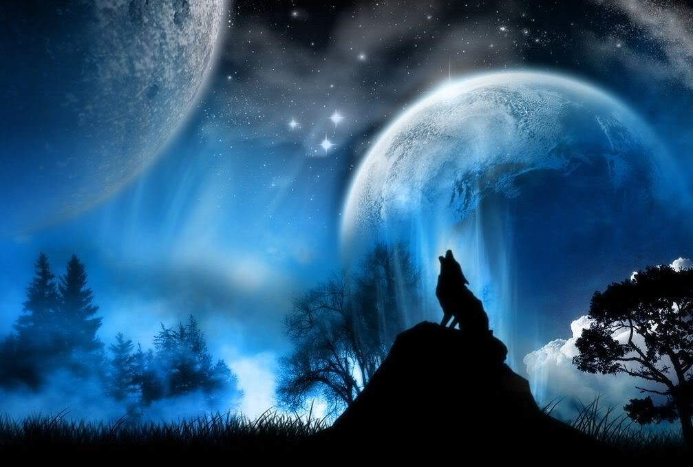 wolf howling at the moon by silverwolfwing on DeviantArt