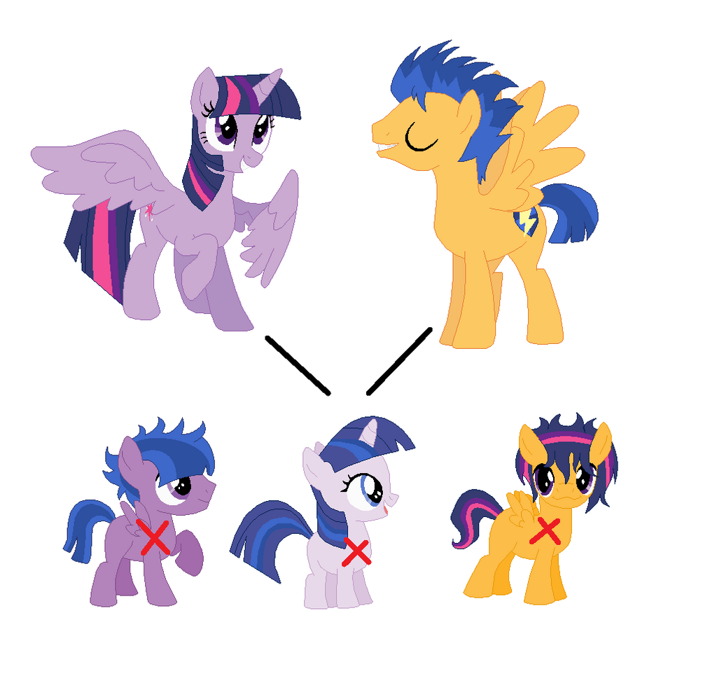 My little pony twilight sparkle and flash sentry kids