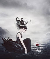 Black Swan by ChieuMua